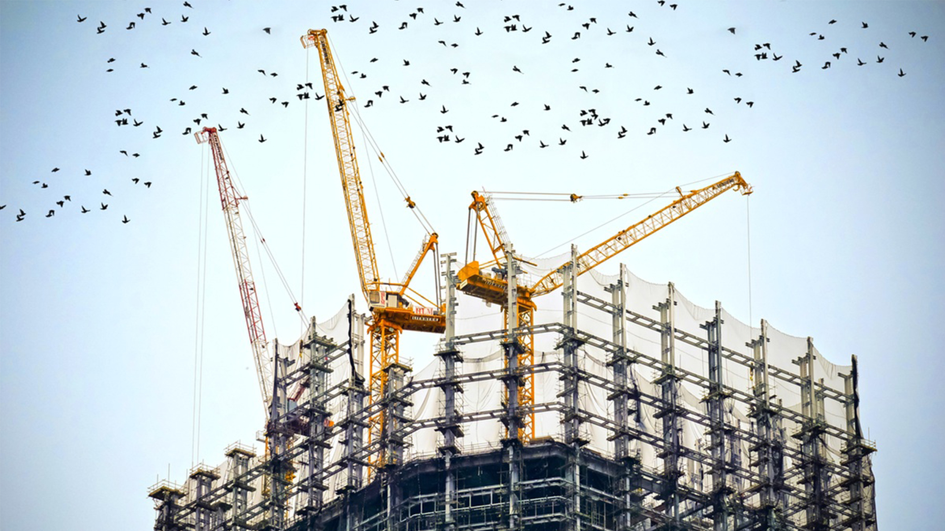 Nature and Scope of Sales Tax on Services Related to the Construction Industry